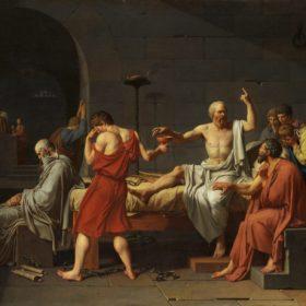 Articolo quinto e l'estetica della legge